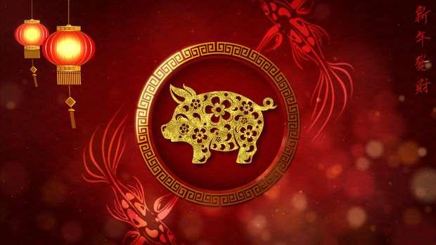 o-ano-do-porco-na-terra